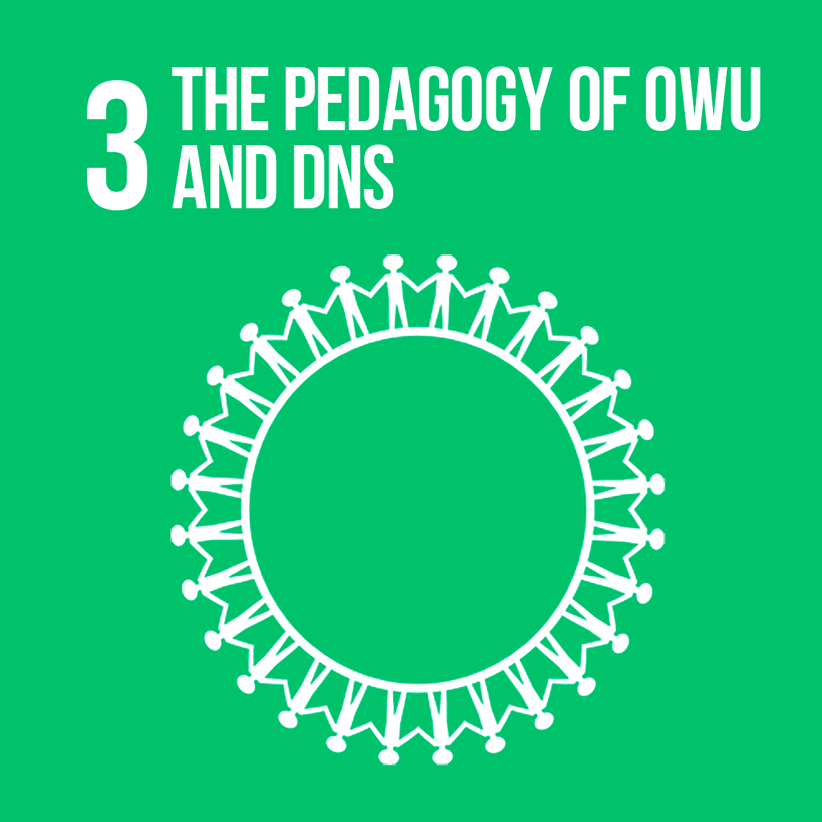 DNS offers a non-traditional bachelor of pedagogical science