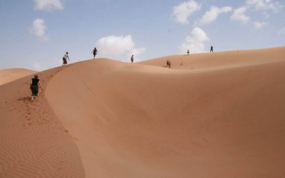 Meet the Dunes